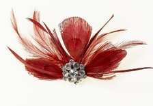hair feathers clip in